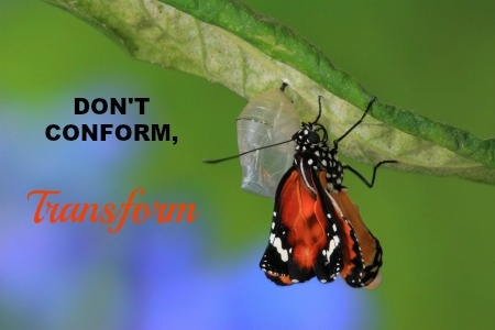 conform or transform